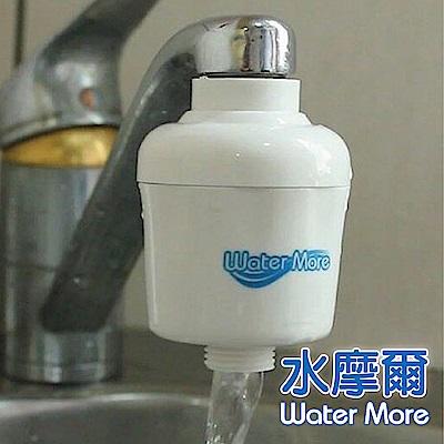 水摩爾日本亞硫酸鈣銀離子除氯過濾器(贈轉接銅牙+餘氯測試液) -3組裝