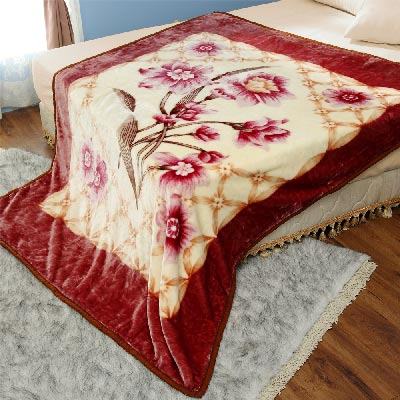 AmoreCasa 古典花園 拉舍爾細絨保暖毛毯