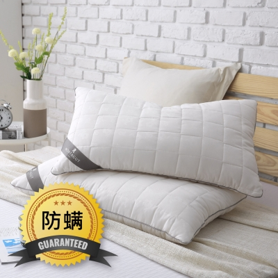 MONTAGUT-抗菌防蹣枕 / 2入