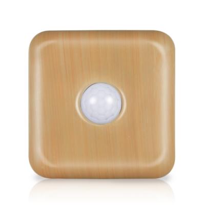 安全家智能夜視燈-感應燈/照明燈/露營燈(竹紋)