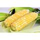 鮮採家 爆汁香甜水果玉米3台斤1箱(約6-10支) product thumbnail 1