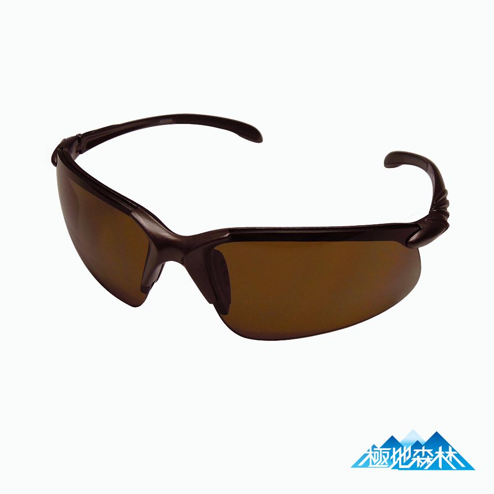 極地森林棕色防爆防霧PC運動太陽眼鏡