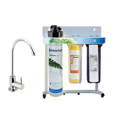 美國原廠 Everpure QL2-S100 三道立架型淨水器