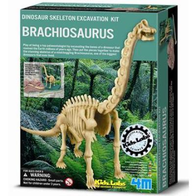 4M挖掘考古Dino Branchosaurus挖掘腕龍