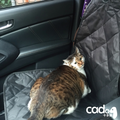 Cadog 車用寵物墊-副駕專用墊_CP-CM 001