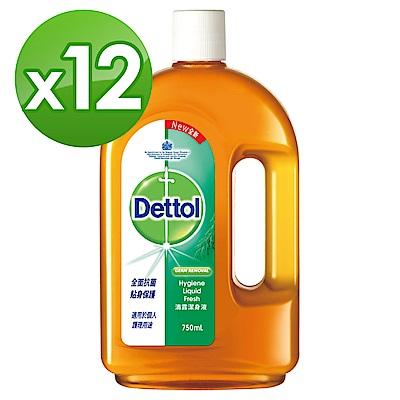 滴露Dettol-潔身液(750ml X12)