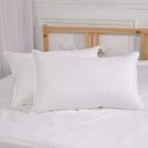五星級飯店指定專用天然水鳥羽毛枕  2入