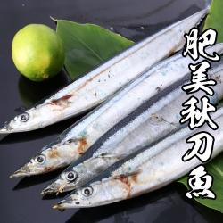 【海鮮王】嚴選肥美秋刀魚 *4組(4-6尾裝) (600g±10%/包) - 秋季當令