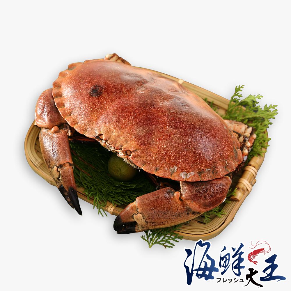 海鮮大王 英國巨碩德文郡蟹4隻組(900g±10%隻)
