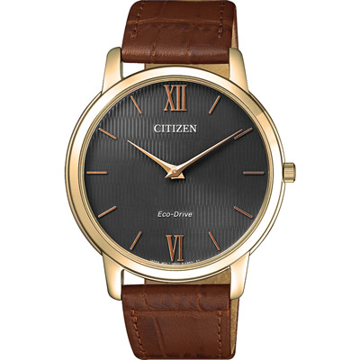 CITIZEN Eco-Drive 沉穩感時尚腕錶-AR1133-15H-39mm