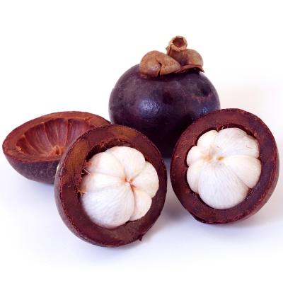 愛上水果 泰國進口鮮凍山竹2包組(500g/包)
