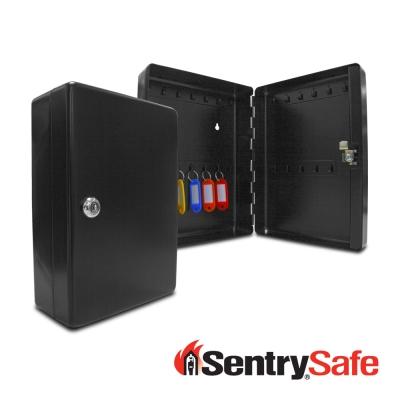 SENTRYSAFE鑰匙防盜安全保管箱(KB25)