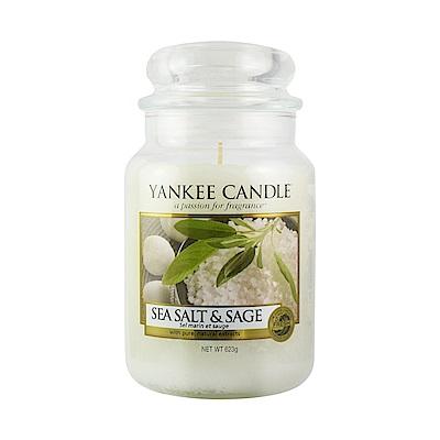 YANKEE CANDLE 香氛蠟燭-海鹽與鼠尾草623g