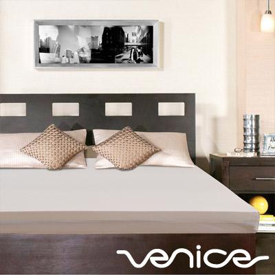 Venice日本抗菌防蹣10cm記憶床墊-雙人5尺(灰色)