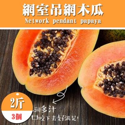 果之蔬 網室吊網木瓜 3個/約2斤/箱±10%
