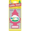 Little Trees美國小樹香片(晨曦)