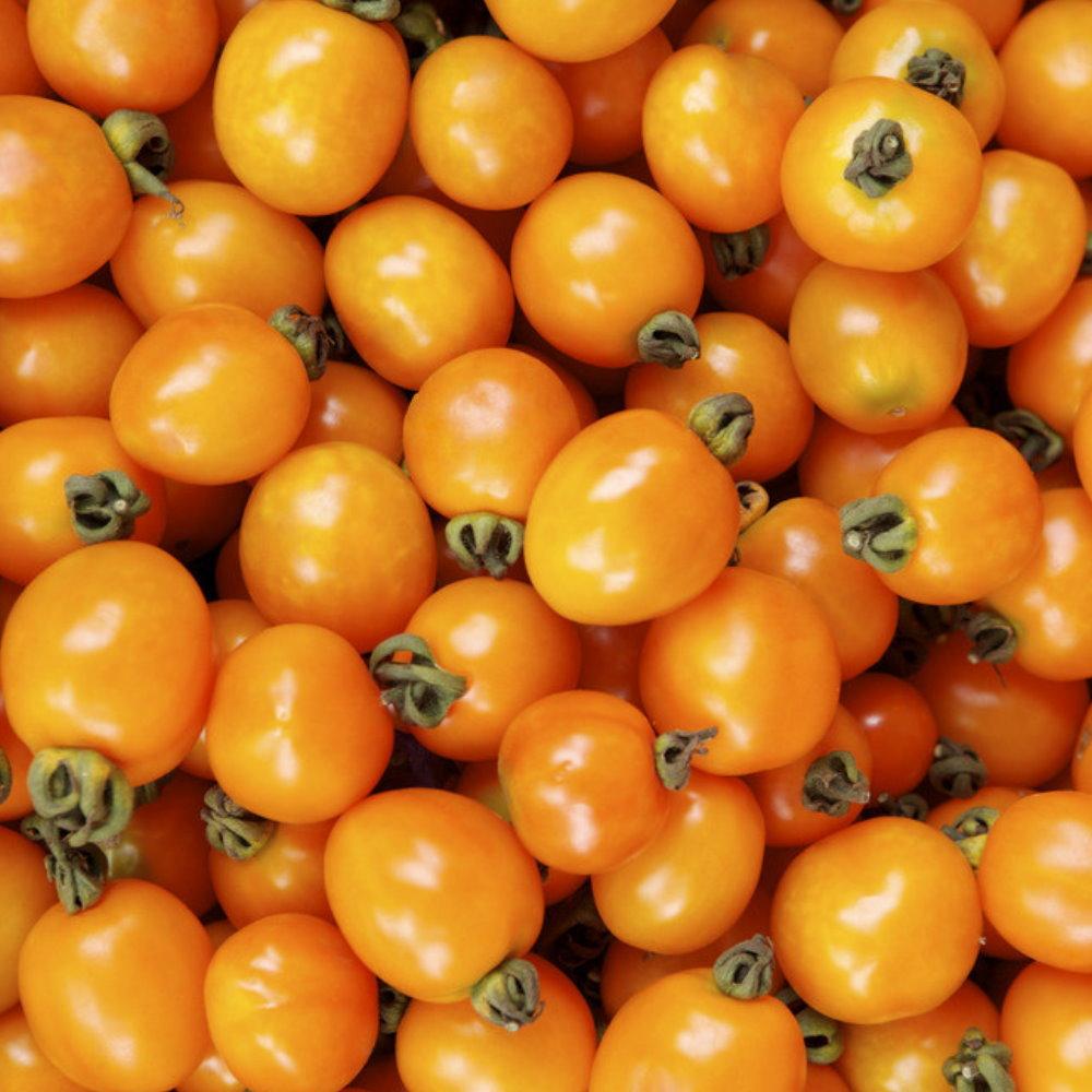 金蜜小番茄(600gx3盒)★水耕栽培★鮮採現送