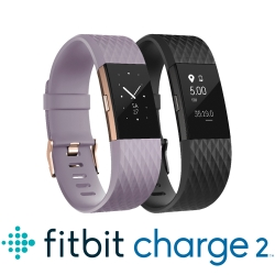 Fitbit Charge 2 無線心率監測專業運動手環 特別版