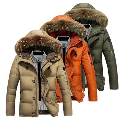 美國熊 寒流剋星 填充白鴨絨 防撥水連帽羽絨外套