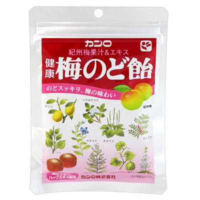 Kanro-龍角散袋糖-梅子-90g