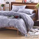 梵蒂尼Famttini-尋秘花境.灰 加大頂級純正天絲萊賽爾兩用被床包組
