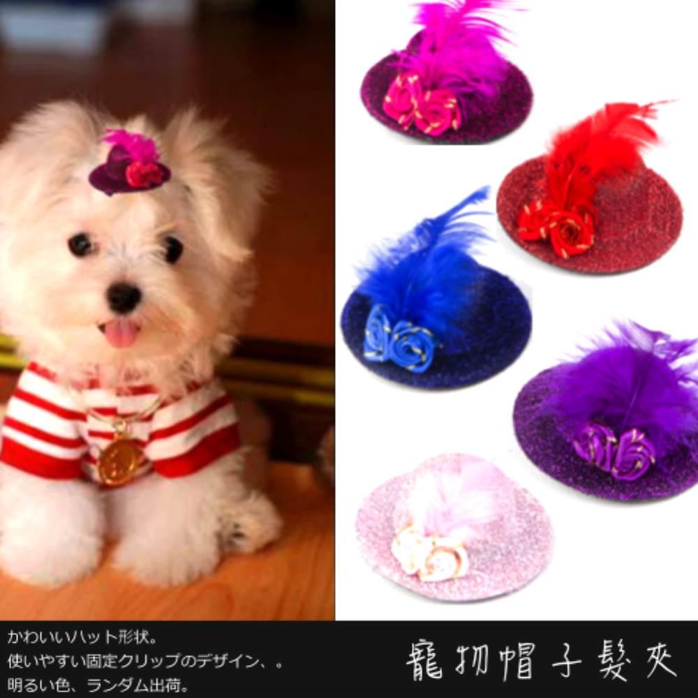 時尚寵物帽子髮夾 (2入可選性別 顏色隨機出貨)