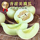 彩水果 嘉義溫室頂級激甜美濃瓜-1箱(5斤/箱)