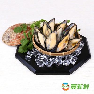 【買新鮮】淡菜800g/包(25~28顆裝)(任選)