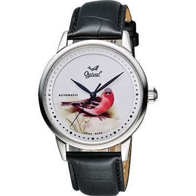Ogival 愛其華 花繪經典彩繪機械腕錶-鳥/40mm