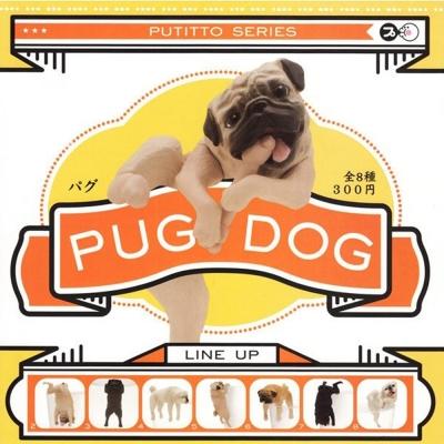 日本正版授權 全套8款 脫力巴哥犬 杯緣子 PUG DOG 扭蛋/擺飾 奇譚 KITAN
