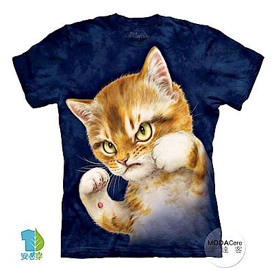 摩達客 美國The Mountain 貓咪鬥士 喵嗚 短袖女版T恤