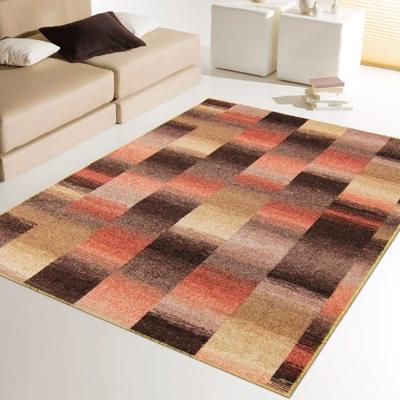 范登伯格 - 雪菲爾 進口地毯- (橘褐色) (小款-100x150cm)